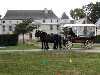 journ e du cheval et de la d ficience 28 septembre 2003 parc du ch teau de la villeni re la pou ze. Black Bedroom Furniture Sets. Home Design Ideas